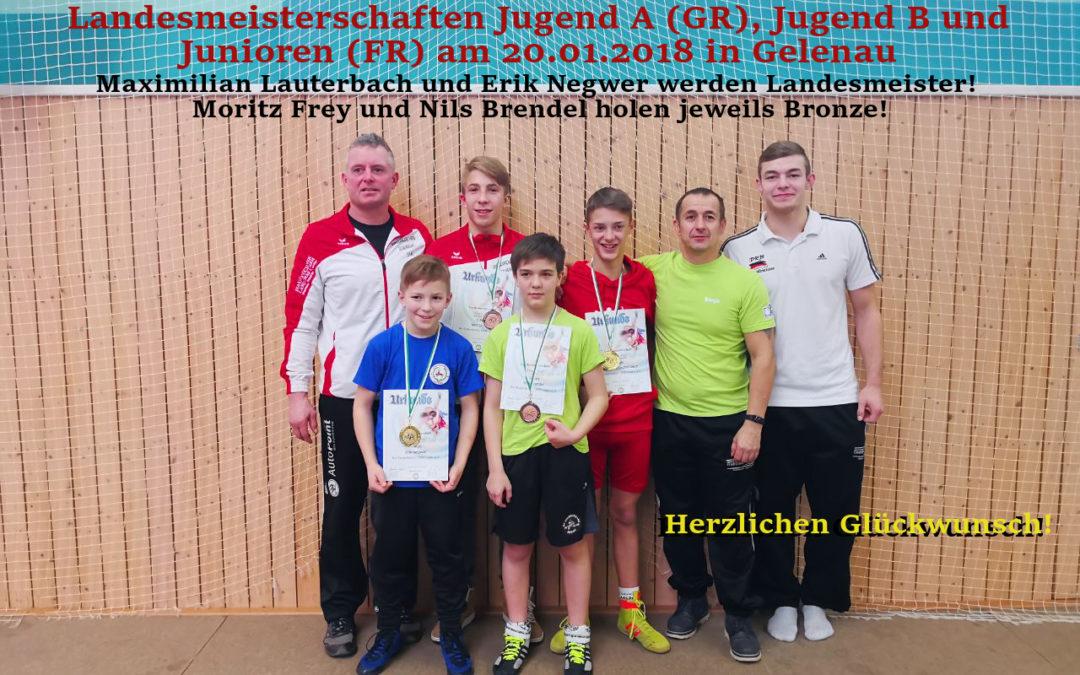 Landesmeisterschaften 20.01.2018 in Gelenau